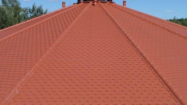Biberschwanz - Dachpfannenprofil